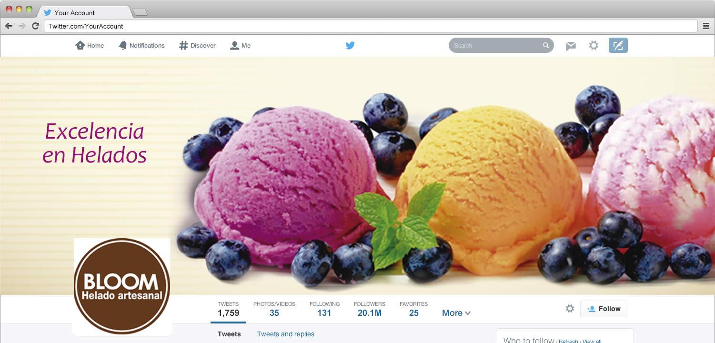 2014_dg1_promocion-en-redes-sociales_Stella-Aldana_Portada-estable-Twitter